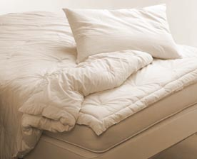 PureGrow Wool Filled Organic Cotton Comforter - Fu/Qu