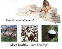 Sleep-Healthy