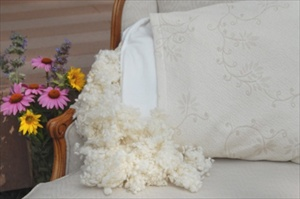 Washable and customizable organic pillow